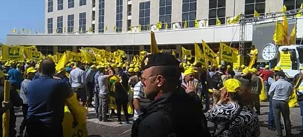L'ira della Coldiretti contro la Regione Calabria«Ritardi nei pagamenti dei fondi per l'agricoltura»