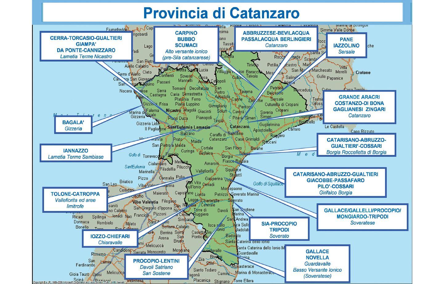 FOTO - Le nuove mappe delle 'ndrine in CalabriaLa ripartizione del territorio secondo l'ultimo rapporto Dia