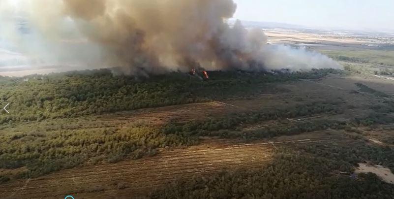 VIDEO - Le immagini dell'incendio a MetapontoLe fiamme mettono a rischio gli stabilimenti turistici