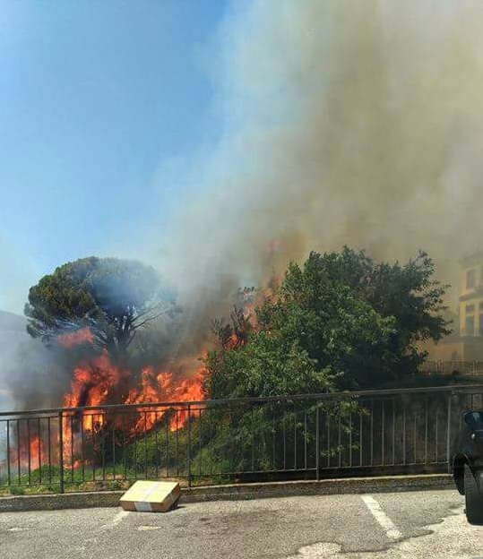 Brucia discarica a Gioia Tauro, evacuate famiglieIncendi in Calabria. Regione chiederà emergenza