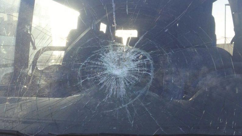 Ancora una intimidazione per le autolinee FedericoLa denuncia del titolare: danneggiati due mezzi