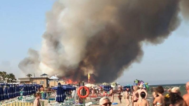 Devastante incendio a Metaponto nel Materano  Le fiamme hanno raggiunto i villaggi turistici