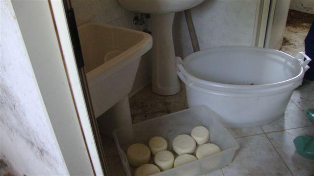 Prodotti caseari senza condizioni igienico sanitarieSequestri e denunce in due aziende catanzaresi