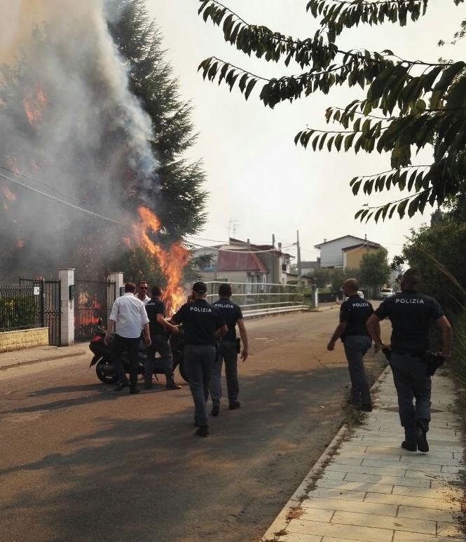 Emergenza incendi, ancora fiamme a CatanzaroDue piromani denunciati dalla polizia nel Cosentino