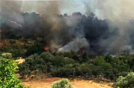 La Calabria brucia ancora, registrati 110 roghiMigliora il fronte incendi a Longobucco e Rose