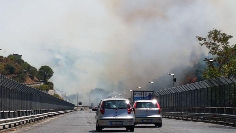 FOTO - Alcune immagini degli incendi divampati a Cosenza e Castrolibero