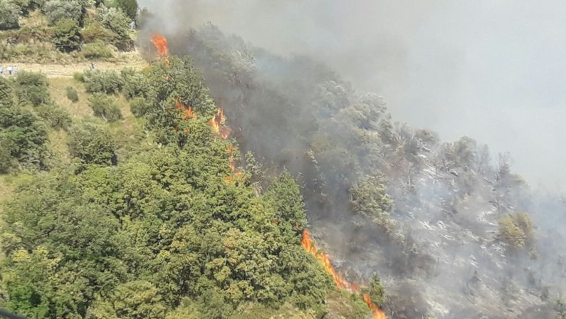 Una marcia silenziosa sui terreni bruciati dagli incendi, l'iniziativa della diocesi di Cassano