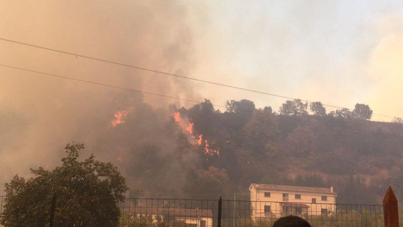 La provincia di Cosenza brucia ancora: vasti incendi nella zona a nord della città, famiglie evacuate