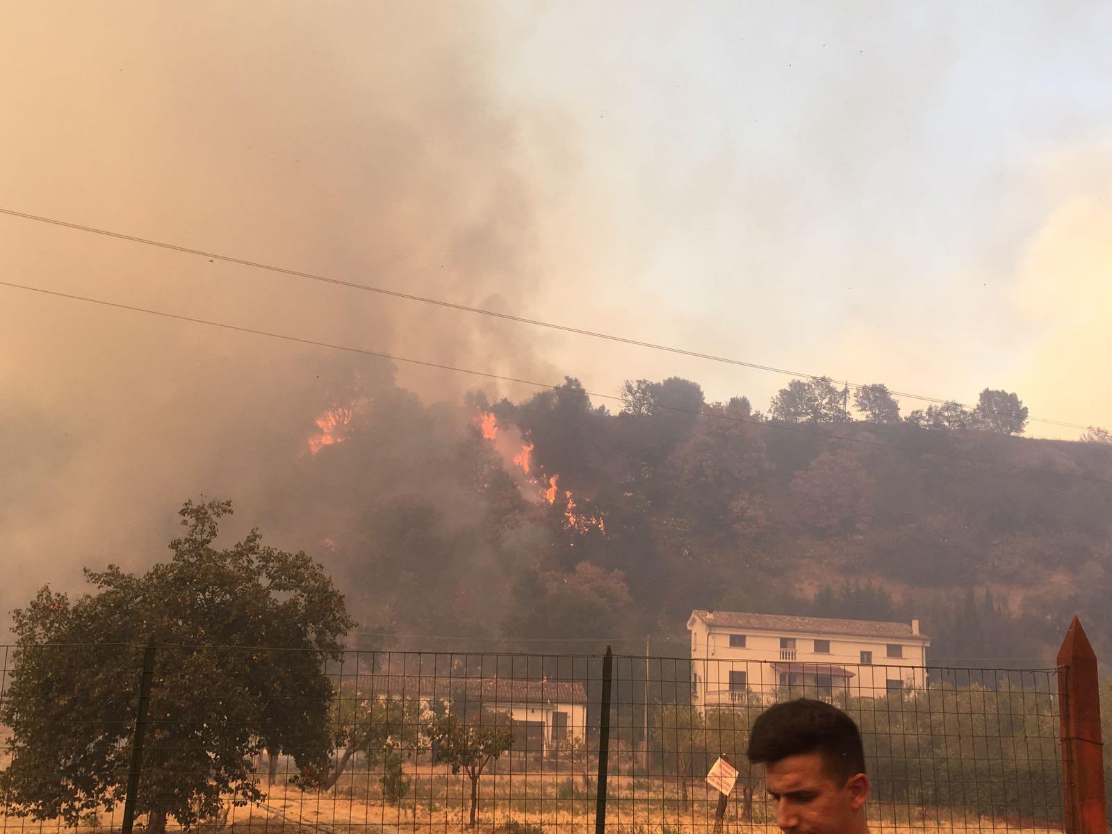 VIDEO - Clinica del Cosentino minacciata dalle fiamme, allertate ambulanze in caso di trasferimento dei pazienti
