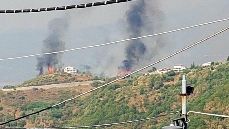 Emergenza incendi: la Calabria brucia, politici al mare  Minorenni presi a Cosenza mentre appiccavano rogo