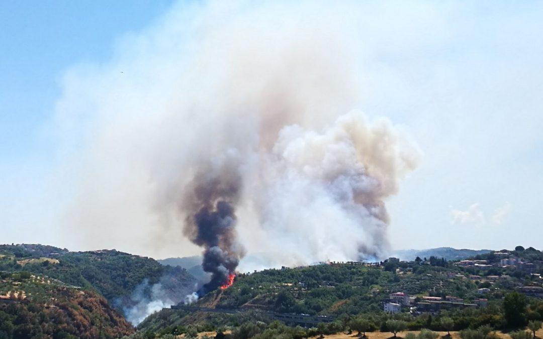 Emergenza incendi, appello arcivescovo di Cosenza  «Chi ha appiccato i roghi si converta e cambi vita»