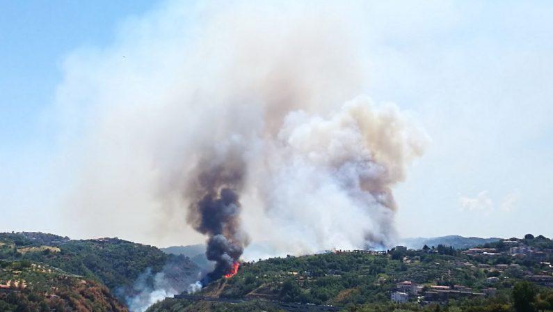 Emergenza incendi, appello arcivescovo di Cosenza«Chi ha appiccato i roghi si converta e cambi vita»