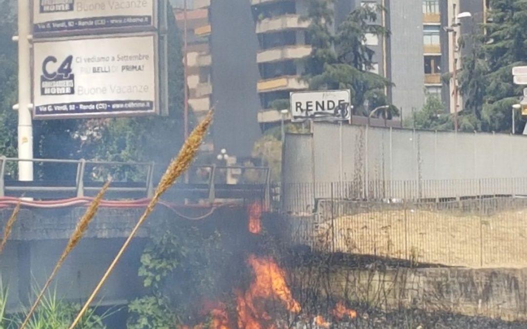 L'incendio al parco Nicholas Green a Rende