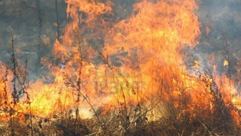 Appiccava un incendio in provincia di Reggio CalabriaArrestato in flagranza dai carabinieri un 52enne