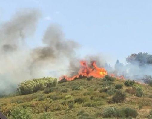 Cosenza brucia ancora: nuovo incendio nella stessa zona già distrutta ieri dalle fiamme