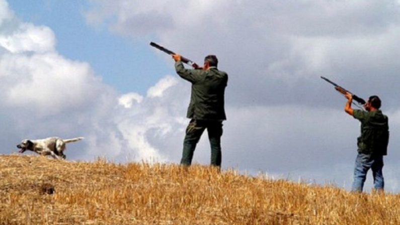 Inizia la caccia ed Enel invita i cacciatori alla prudenza«Oltre ai danni agli impianti, possibili rischi per la vita»