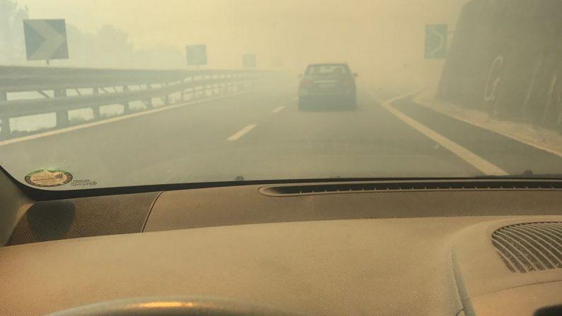 Emergenza incendi in Calabria, allarme a CosenzaIncendio alla periferia, problemi anche a Catanzaro