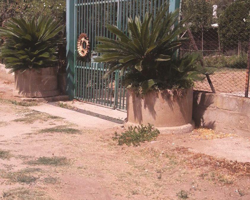 Chiude il fratello disabile in un pollaio nel Vibonese  Arrestato un uomo per maltrattamenti in famiglia