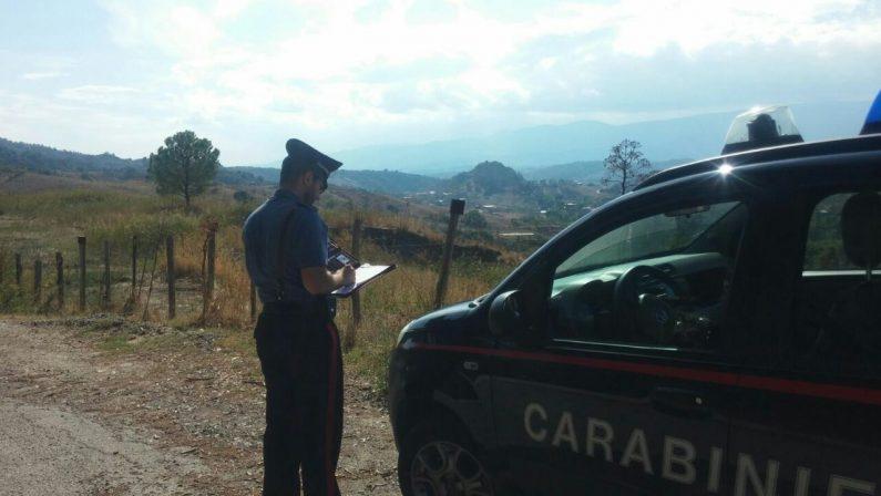 Intimidazioni e danni per tre aziende agricolePresi di mira alcuni imprenditori del Crotonese