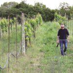 Giancarlo Costabile nelle terre confiscate al clan a Chiaiano, nel Napoletano.jpg