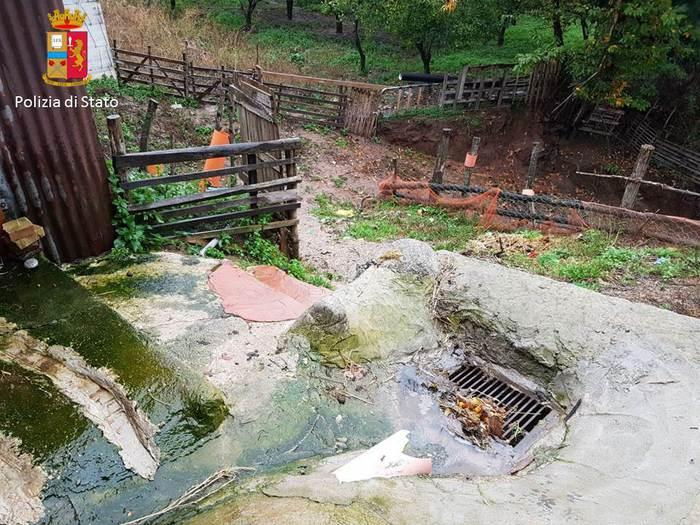 Polistena, azienda di allevamento accusata di inquinamentoSversava le acque reflue direttamente nel fiume Jerapotamo