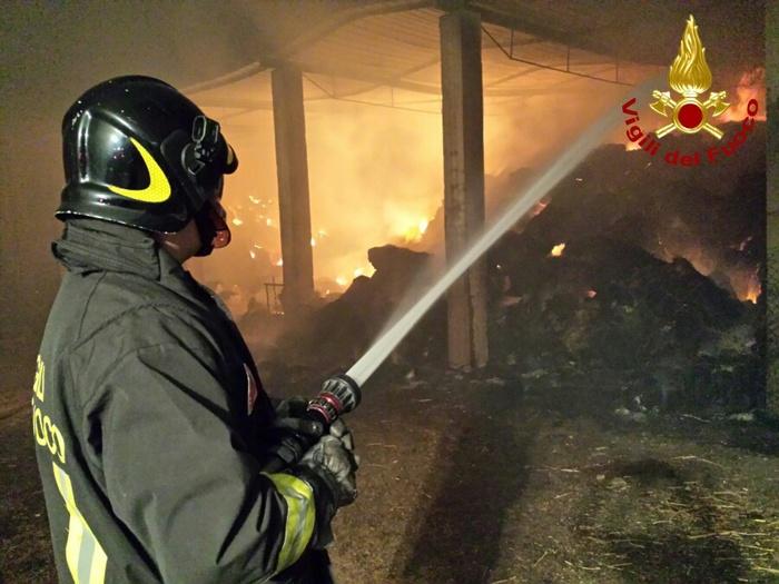 Mileto, incendiato nella notte un capannone agricolo  Gli animali all'interno portati in salvo dai vigili del fuoco