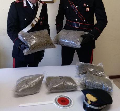 Viaggiava con 3,5 chilogrammi di marijuana a bordoArrestato un uomo per detenzione ai fini di spaccio