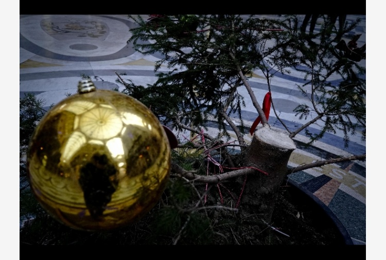 Napoli, ignoti vandalizzano e poi rubano l'Albero di Natale della Galleria Umberto