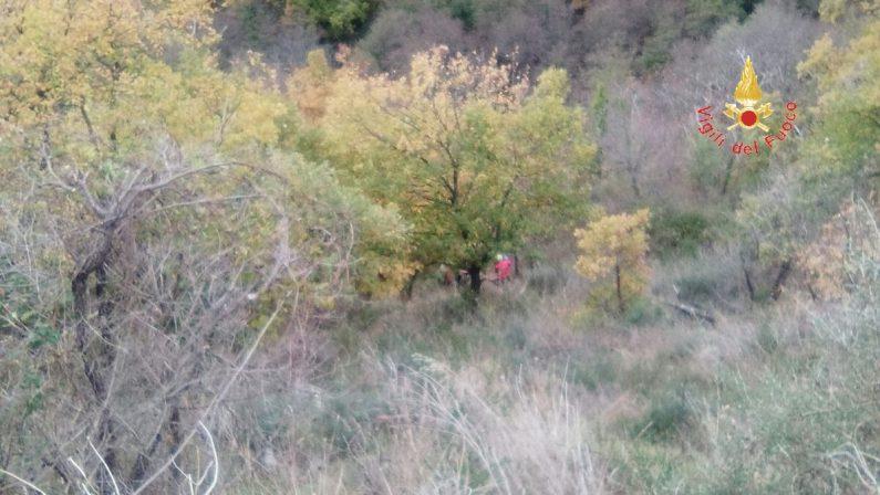 Ritrovato morto l'uomo disperso nel CatanzareseUna seconda persona salvata dopo caduta in un dirupo