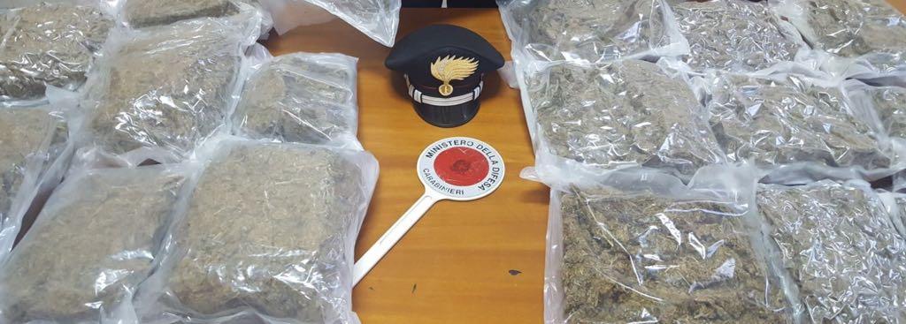 Oltre un chilo di marijuana in casa nel Reggino  Giovane arrestato dopo una perquisizione