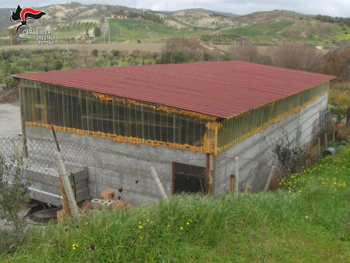 Strongoli, scoperto e sequestrato un capannoneEra stato realizzato senza autorizzazione, una denuncia