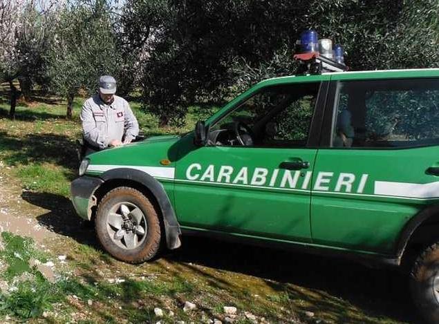 Incendiano rifiuti alla periferia di Crotone, denunciate due persone