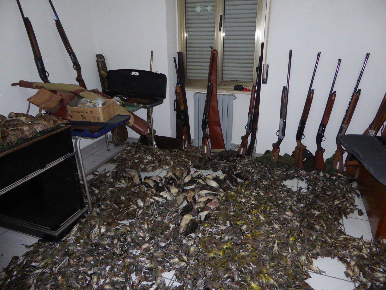 VIDEO - Uccelli abbattuti, armi e munizioni sequestrati nel corso dell'operazione Osei 2 tra Corigliano e Rossano