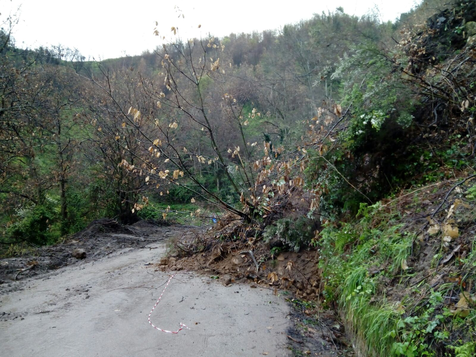 Continua a cedere la strada tra Acquaro e PianiSeconda frana in pochi giorni: chiusa la circolazione