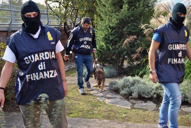 Droga e rapine su tutto il territorio nazionaleEseguiti 24 arresti in Calabria, Lombardia e Puglia