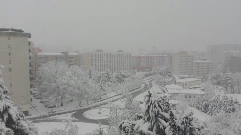 Nevica a Potenza, chiuse le scuole e l'Università
