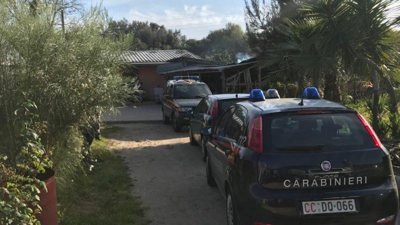 Morde una capra e posta il video su FacebookCarabinieri denunciano un allevatore nel Reggino