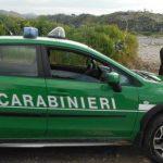 carabinieri-forestali repertorio.jpg