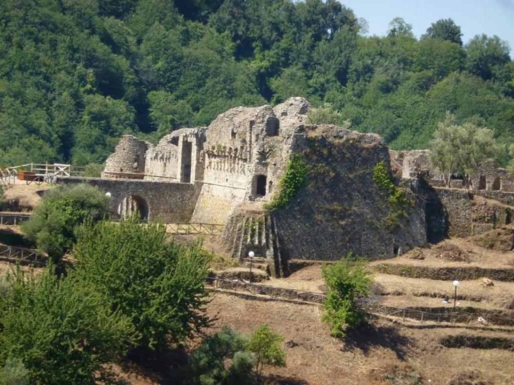 Pascola il gregge nell'area del castello normannoDenuncia e sequestro dei carabinieri nel Vibonese