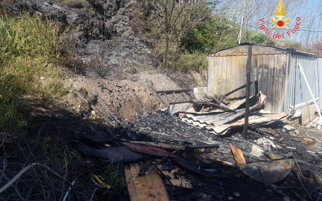 Arriva il caldo e scoppiano i primi incendi in Calabria  Molti gli interventi nel Catanzarese: minacciate case