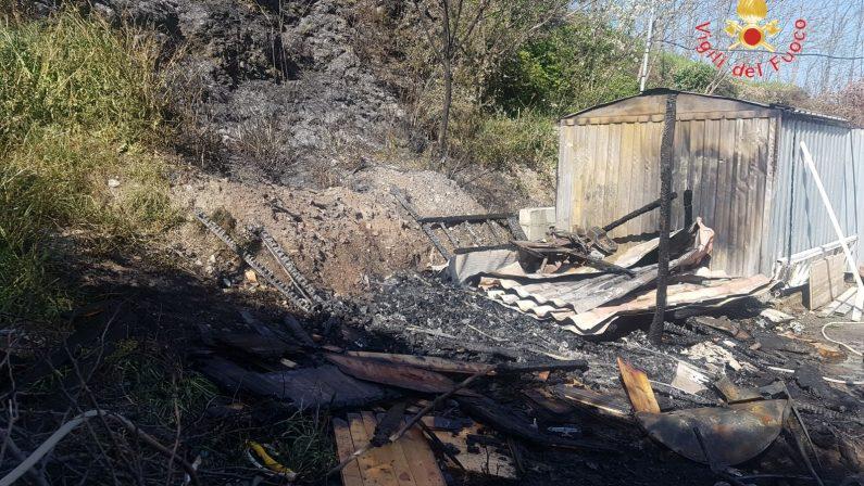 Arriva il caldo e scoppiano i primi incendi in CalabriaMolti gli interventi nel Catanzarese: minacciate case