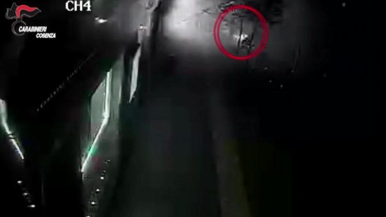 VIDEO - L'esplosione nel bar di Cosenza per truffare l'assicurazione: l'autore travolto dalle fiamme