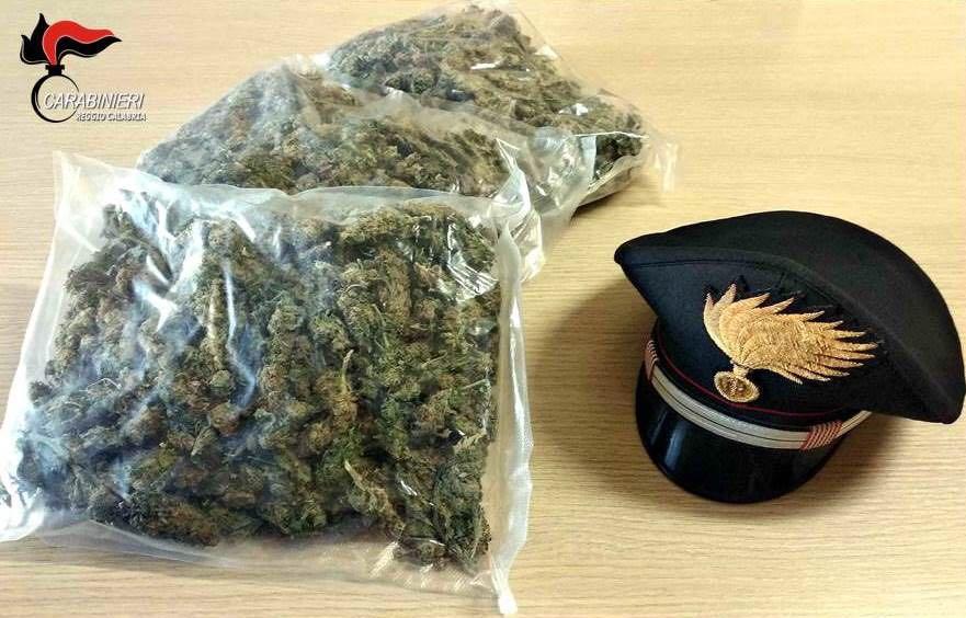 Crotone, tre chili di marijuana nascosti sul luogo di lavoro  Quarantenne arrestato per detenzione ai fini di spaccio