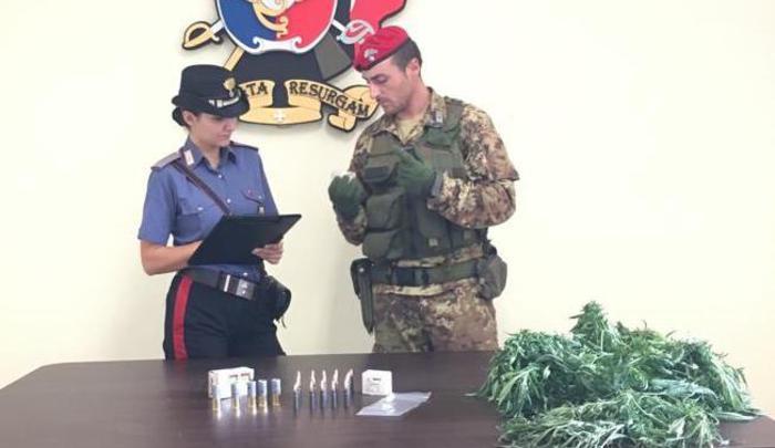Munizioni per armi da guerra e coltivazione di drogaArrestato un 30enne ad Oppido Mamertina