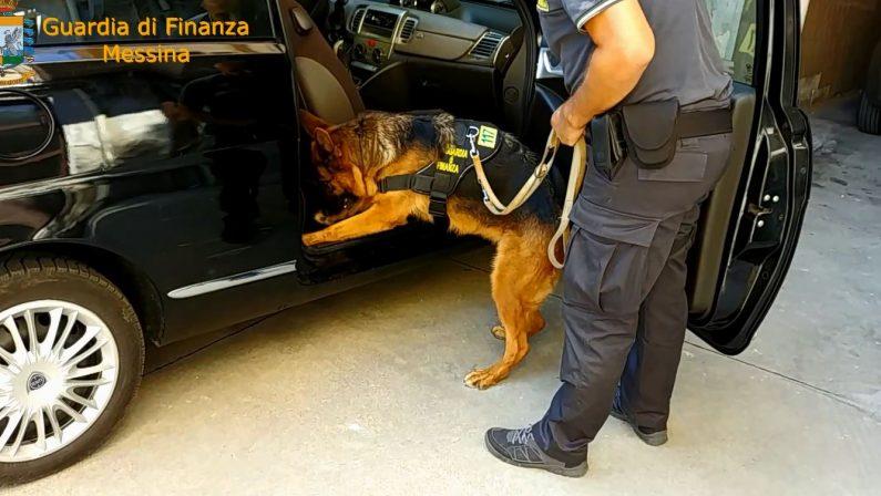 Dalla Calabria in Sicilia con undici chili di cocainaArrestato agli imbarchi: scoperto dal cane antidroga
