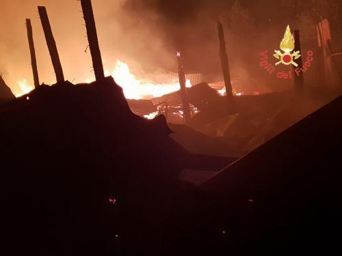Incendio distrugge un capannone nel CatanzareseMorti alcuni animali, indagini sulle cause del rogo