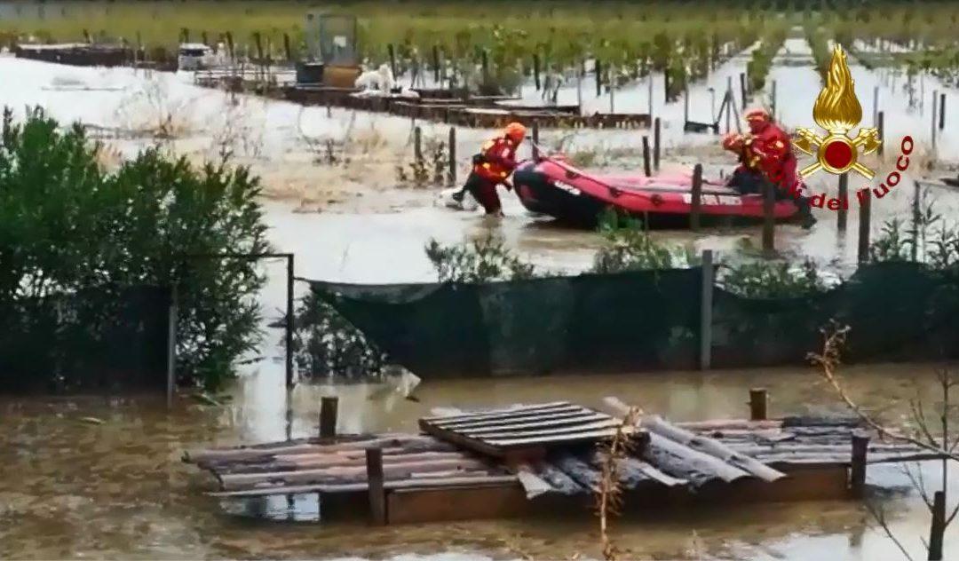 VIDEO – Maltempo in Calabria: canile allagato nel Crotonese, salvati alcuni animali