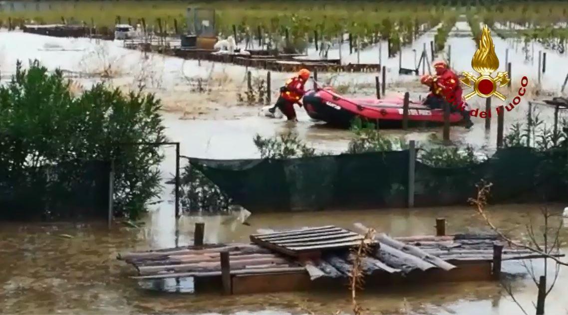 VIDEO - Maltempo in Calabria: canile allagato nel Crotonese, salvati alcuni animali