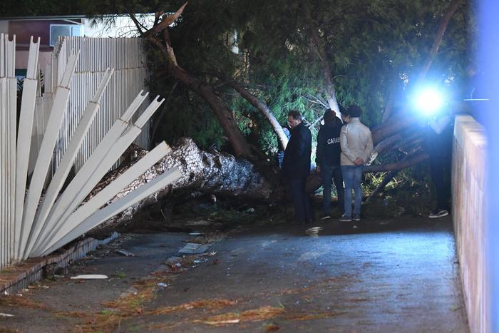 Tragedia a Fuorigrotta: cade un albero e uccide un 21enne di Caserta