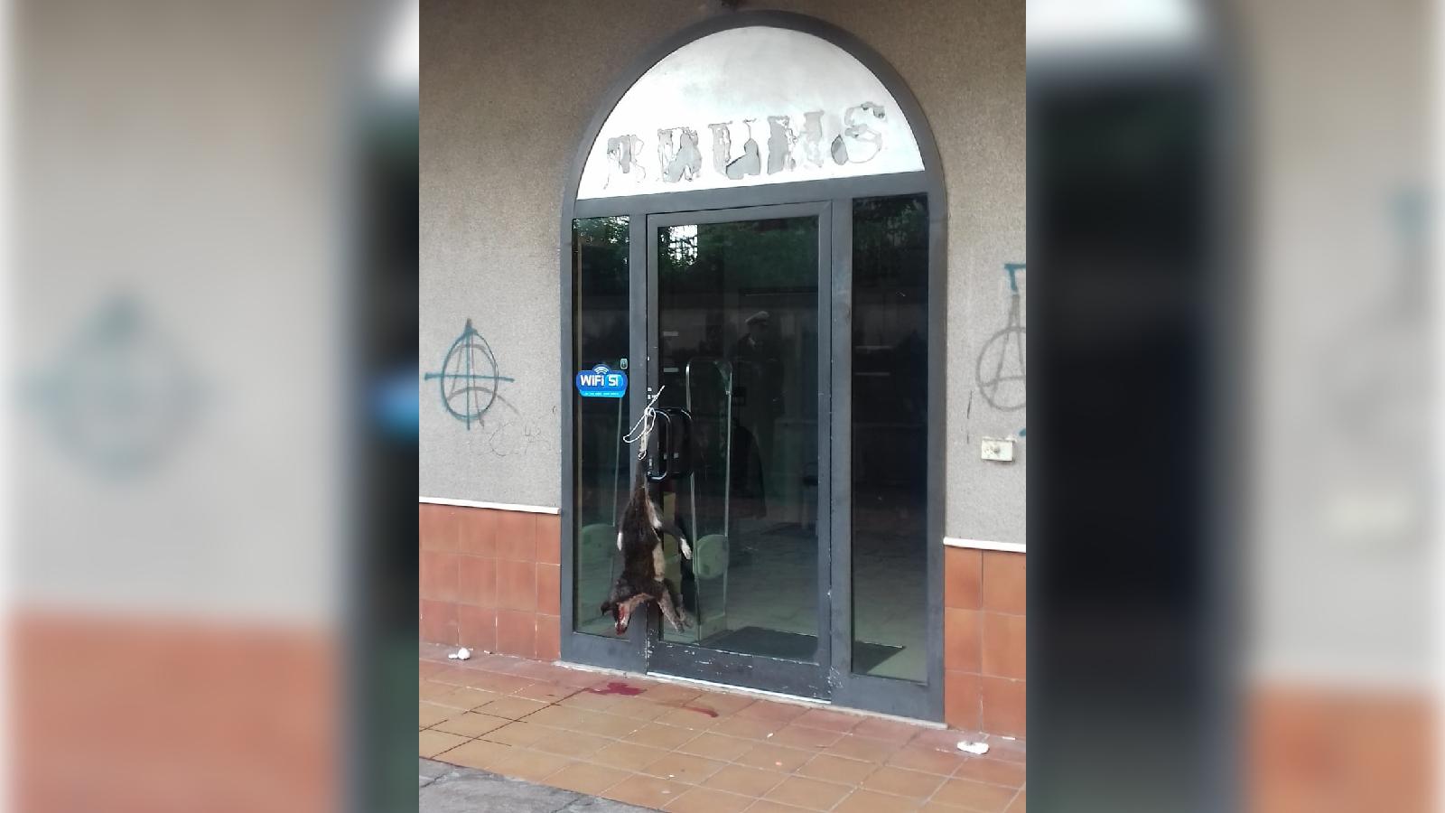 Vibo, macabra intimidazione a negozio in centro Un cane ...
